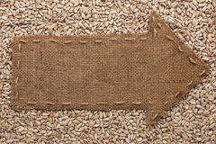 Pointer of  burlap lies on sunflower seeds Stock Photo