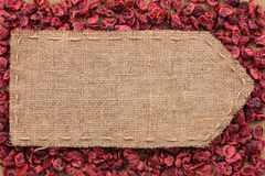 Pointer of burlap lying on a dry cranberry background Stock Image
