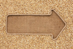 Pointer made from rope with grain pearl barley  lying on sackclo Royalty Free Stock Photography