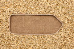 Pointer made from rope with grains barley lying on sackcloth Stock Photos