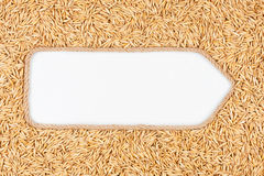 Pointer made from rope with grains oats  lying on a white background Stock Photo