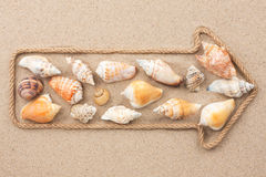 Pointer made of rope with sea shells Royalty Free Stock Photography