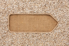 Pointer made from rope with sunflower seeds  lying on sackcloth Royalty Free Stock Photography