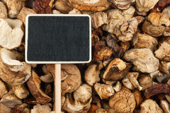 Pointer, the price tag lies on mushrooms Stock Photography