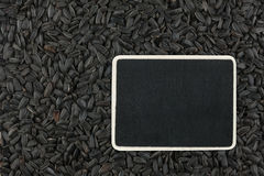 Pointer, the price tag lies on  sunflower  seed Stock Image