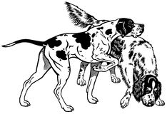 Pointer and setter black white Royalty Free Stock Photography