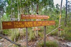 Pointer w Bako parku narodowym obrazy stock