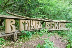 Pointer in a yew-Box grove in the Khostinsky district of Sochi. The inscription in Russian