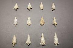 Pointes de flèche en pierre néolithiques Image libre de droits