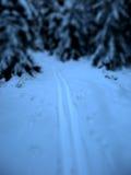 Pointes de ski Images libres de droits