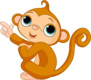 Pointing baby monkey Stock Photo