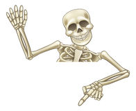 Pointing and Waving Cartoon Skeleton Royalty Free Stock Images