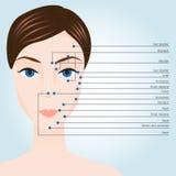 Points d'acuponcture sur le visage images stock