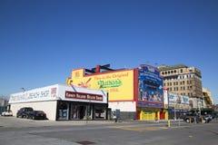 Points de repère de Coney Island photo libre de droits