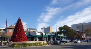 Pointsettiakerstboom in Weinig Italië in San Diego Van de binnenstad royalty-vrije stock fotografie