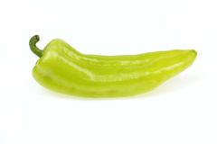 Pointy green pepper. On white background royalty free stock photos