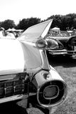 Classic Americana car tail lamps. Pointy tail lamps on tailfin on 1959 Cadillac. outdoors, sunny day, natural sunlight. monochromatic in black and white stock photos