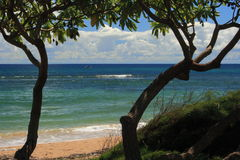 Poipu Beach Kahuai. Located away from the crowds this small portion of the beach is framed between two trees with green leaves across the top of the photo. White Stock Photo