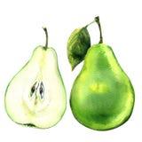 Poire à moitié verte entière et coupée en tranches fraîche d'isolement sur le blanc illustration de vecteur
