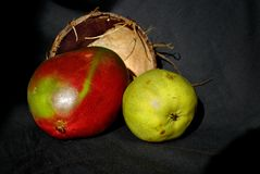 Poire et mangue combinées photo stock