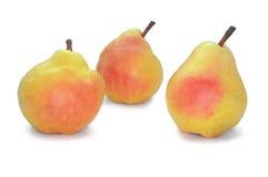 Poire sur le fond blanc Fruit juteux Photographie stock libre de droits
