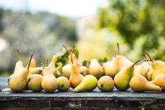 Poires d'automne sur le bois Photographie stock libre de droits