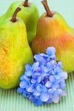 Poires et fleur Photos stock