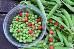 Pois et fraisiers communs écossés Photo stock