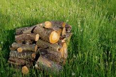 Poised wood Stock Photo