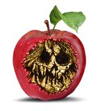 Poison Apple Symbol. Poison apple and food safety concept as a rotten fruit with a death hidden skull inside as a symbol of witchcraft or magical curse and royalty free stock photography