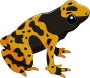 Poison dart frog isolated on white background. Illustration of Poison dart frog isolated on white background royalty free illustration