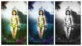 Poison ivy Royalty Free Stock Images