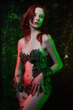 Poison Ivy Royalty Free Stock Photo