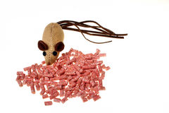 Poison rodents and one mice isolated Royalty Free Stock Photos