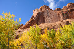 Poison Spider Mesa in the Fall Stock Images