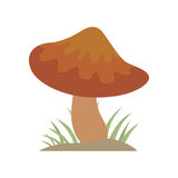 Poisonous brown mushroom nature food vegetarian healthy autumn edible and fungus organic vegetable raw ingredient vector. Illustration. Gourmet poison not Royalty Free Stock Images