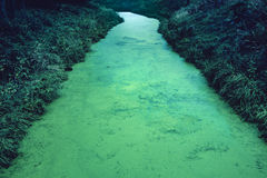 Poisonous River. The gloomy and sinister river with poisonous color Stock Image
