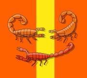 Poisonous Scorpions. Dangerous Poisonous Scorpions Animals Vector Illustration Stock Images