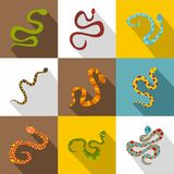 Poisonous snakes icons set, flat style Royalty Free Stock Photography