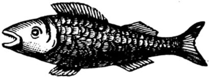 poisson-003 Royalty Free Stock Images
