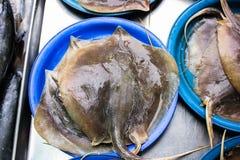 Poisson de mer frais, la poissonnerie Image libre de droits