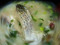 Poisson de mer de gruau de poissons de Hong Kong Photo stock