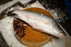 Poisson frais sur la planche à découper sur la poissonnerie Photos stock