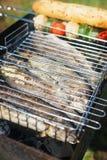Poisson frais sur le gril Barbecue avec des amis en parc d'été Photographie stock