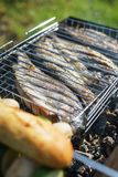 Poisson frais sur le gril Barbecue avec des amis en parc d'été Photo libre de droits