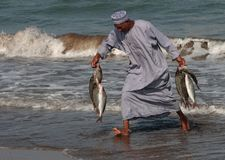 Poisson-vendeur chez Barka, Oman Photographie stock
