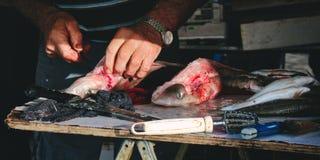 Poissonnier pelant des chiens de mer à une poissonnerie méditerranéenne photos libres de droits