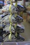 Poissons à vendre à Hong Kong Photos libres de droits