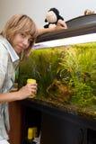 Poissons alimentants de fille dans l'aquarium images stock