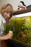 Poissons alimentants de fille dans l'aquarium Image libre de droits